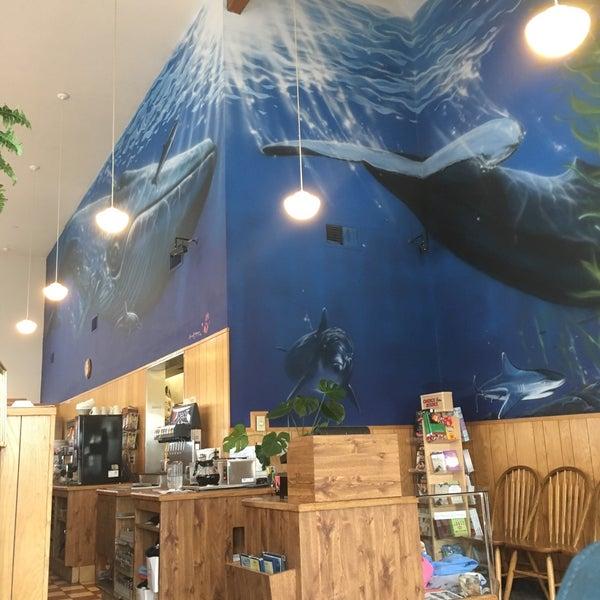 11/9/2016 tarihinde Kathleen O.ziyaretçi tarafından Blue Whale'de çekilen fotoğraf