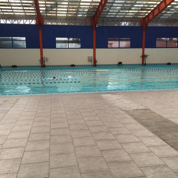 fotos en alberca xochimilco piscina en m xico