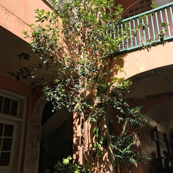 St Philip Hotel Nola