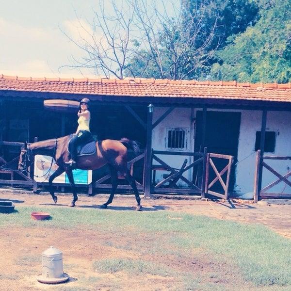 İyi olan herşey huzur burda :) atlar, wifi, priz, huzur, samimiyet daha çok şeyy :)
