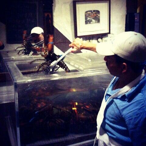 Asian cuisine 4 visitors for Asian cuisine tulsa