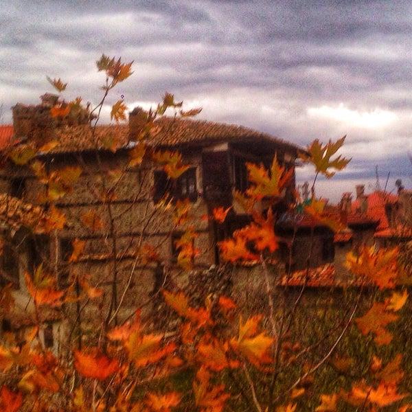 11/28/2017 tarihinde Çiğdem G.ziyaretçi tarafından Buldan'de çekilen fotoğraf