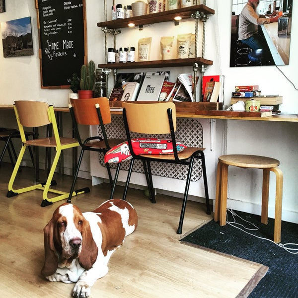 Perfect flat white, amazing barista/owner and the cutest dog! Must-visit for all coffee lovers