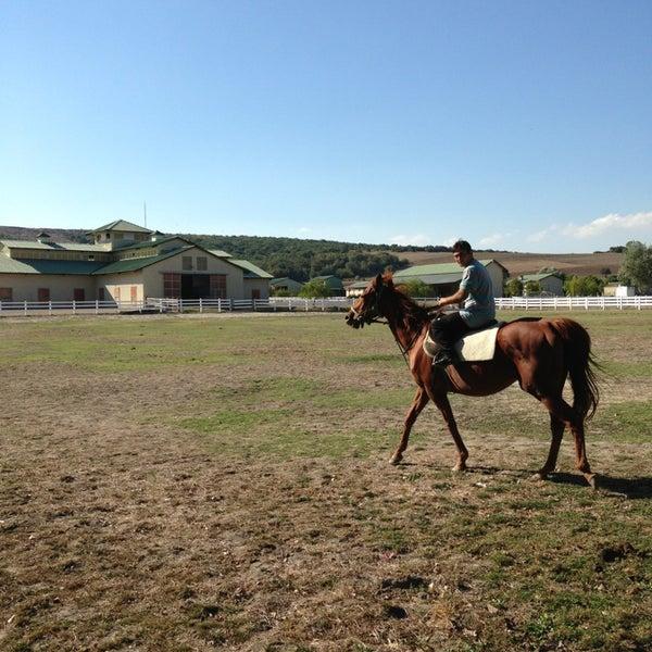 9/12/2013 tarihinde ahmet d.ziyaretçi tarafından Olimpos At Çiftliği'de çekilen fotoğraf