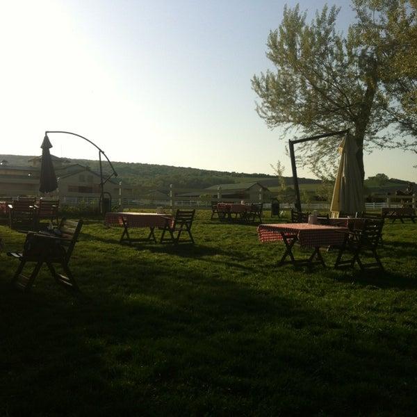 4/28/2013 tarihinde ahmet d.ziyaretçi tarafından Olimpos At Çiftliği'de çekilen fotoğraf