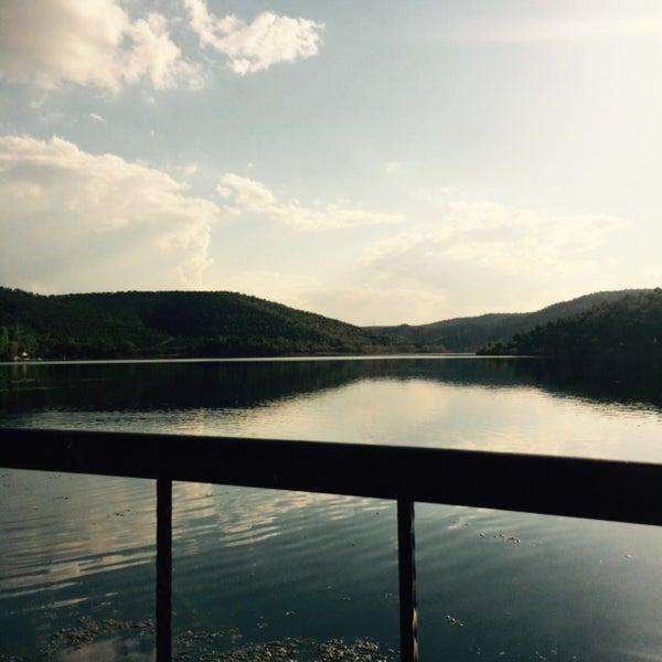 5/11/2015 tarihinde Arzu C.ziyaretçi tarafından Orfoz'de çekilen fotoğraf