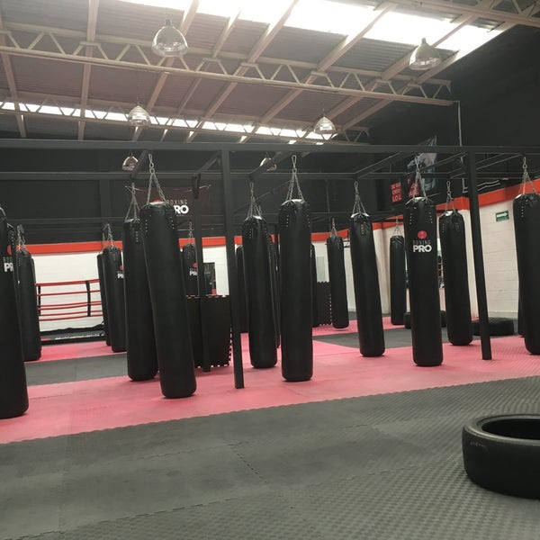Boxing pro gimnasio de boxeo en benito ju rez for Gimnasio de boxeo
