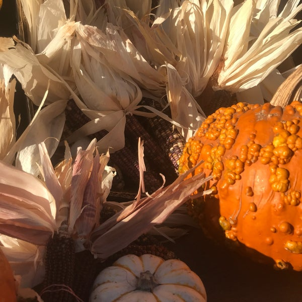 Photo taken at Clancy's Pumpkin Patch by Sarah T. on 10/6/2017