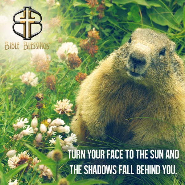 Sunday is Groundhog Day. Did you know Groundhog Day originated from an ancient Christian feast? Click here to learn more: http://ow.ly/t3AOE #christianjobs