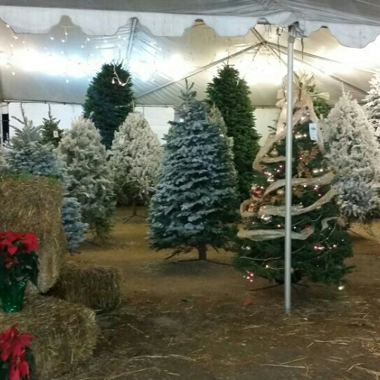 photo taken at pinery christmas trees by vannygrl on 12222015 - Pinery Christmas Trees