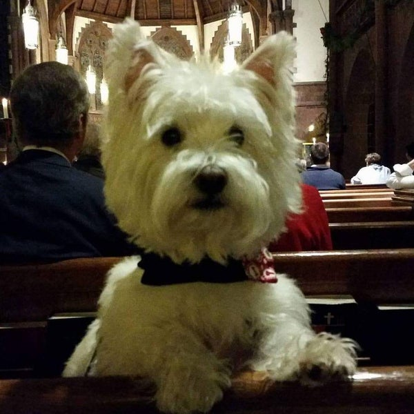 Photo taken at Church of the Holy Trinity (Episcopal) by Ami S. on 12/25/2015