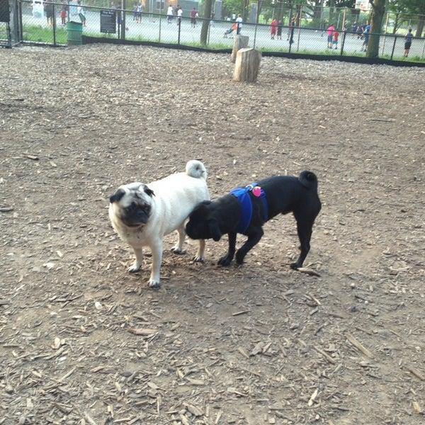 Photo taken at Cunningham Park Dog Run by Elizabeth A. on 6/9/2013
