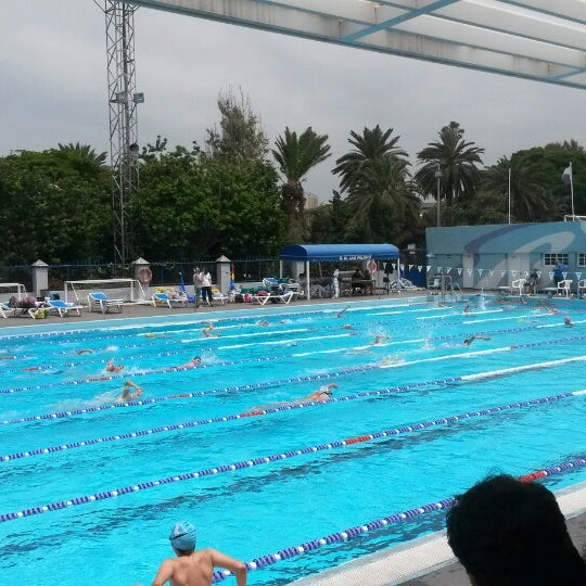 Piscina julio navarro club nataci n las palmas piscina for Piscina las palmas