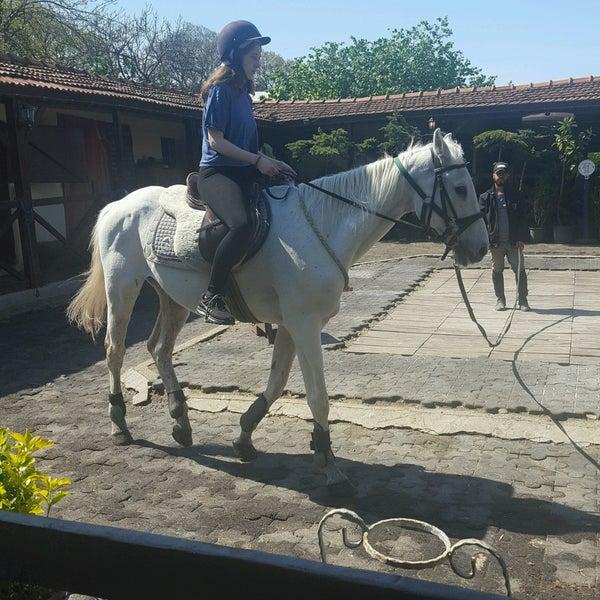 4/27/2017 tarihinde Osman B.ziyaretçi tarafından AtlıTur At Çiftligi'de çekilen fotoğraf
