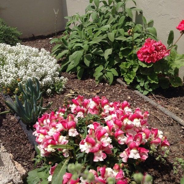 Photo taken at Silene Villas Hotel by Marianna V. on 5/27/2014