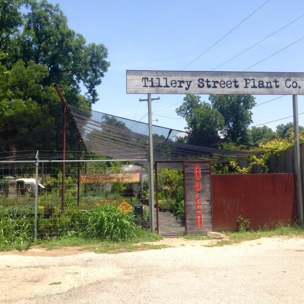 Foto tomada en East Austin Succulents por Shelby C. el 7/3/2014