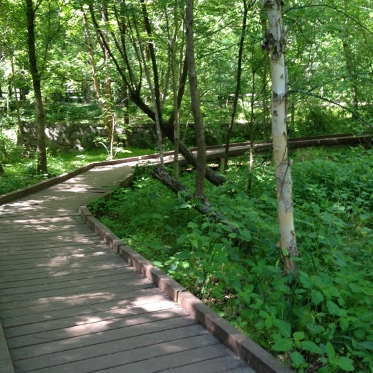 Dunwoody Nature Center Visit