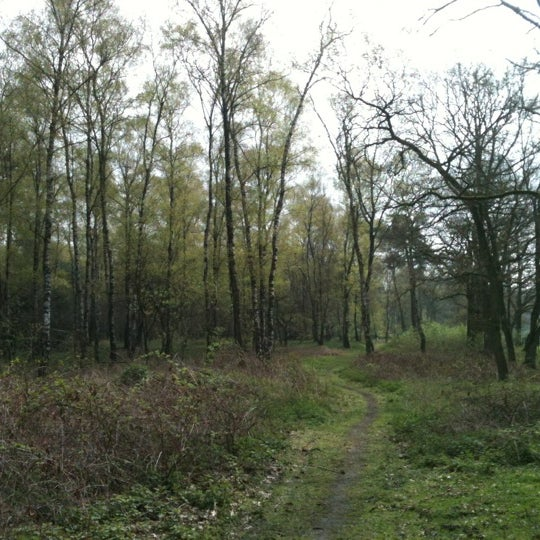 Photo taken at Nationaal Park De Hoge Veluwe by Miss T. on 6/1/2012