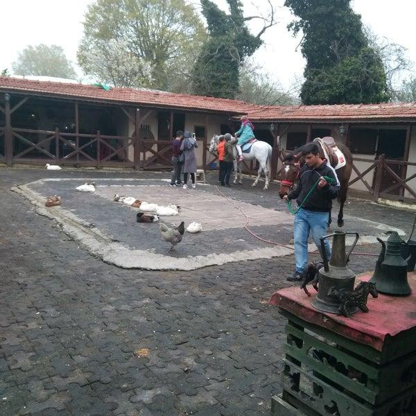 4/14/2018 tarihinde büşra t.ziyaretçi tarafından AtlıTur At Çiftligi'de çekilen fotoğraf