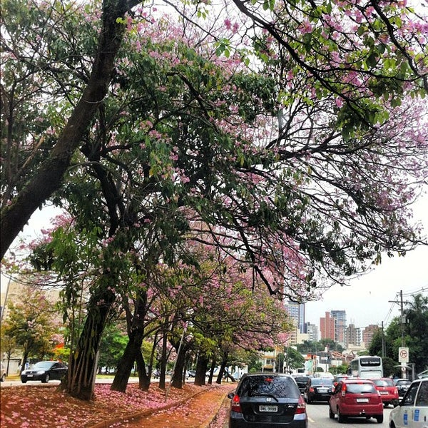 Photo taken at Avenida Brasil by Karla C. on 11/1/2012