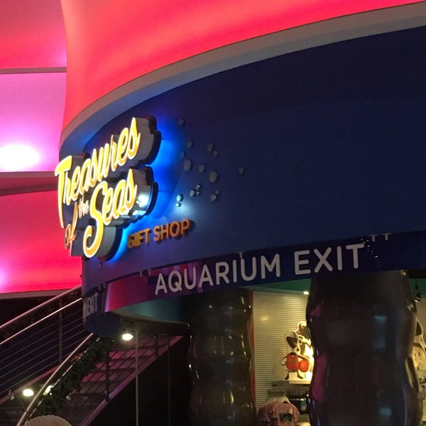 photo relating to Aquarium of the Pacific Coupons Printable called Ga aquarium present retailer coupon codes qvc