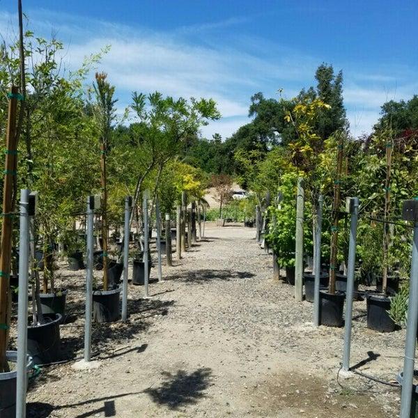 Myrtle Creek Botanical Gardens Nursery 2940 Reche Rd