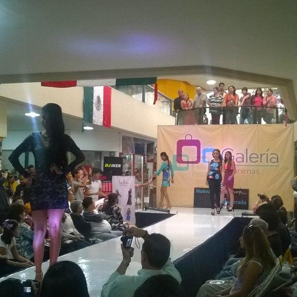 Galería Las Ánimas