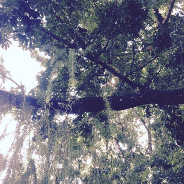 Photo taken at Maria Cristina Park by Xipriano B. on 10/16/2014