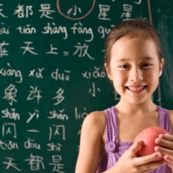 Aprovecha nuestra promoción en clases de Chino con precios imbatibles y profesorado nativo. Infórmate ya en el 912937060.