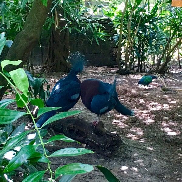Photo taken at Maharajah Jungle Trek by Nathan H. on 10/20/2016