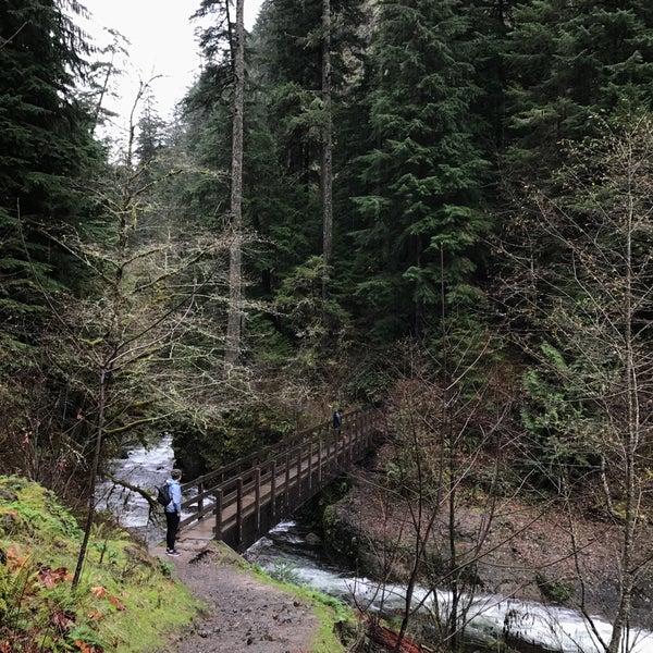 Photo taken at Wahclella Falls Trail by Chloe P. on 11/23/2016