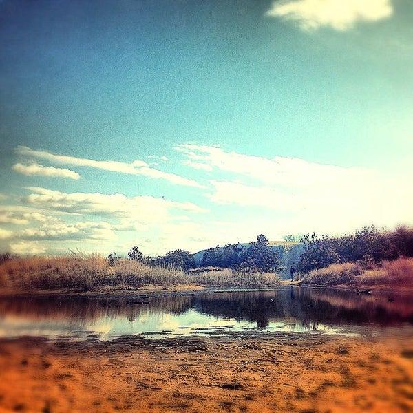 Photo taken at Jockey's Ridge State Park by Linda Y. on 3/27/2013