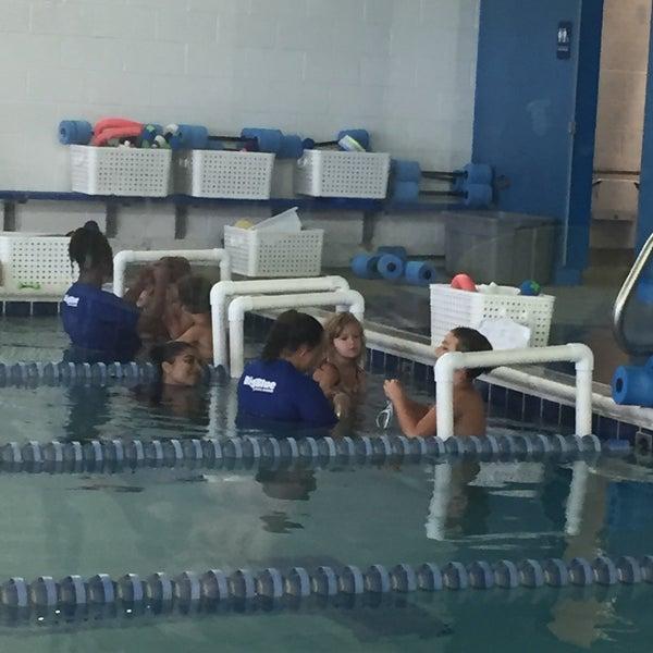 Big Blue Swim School Buffalo Grove New Images Blue