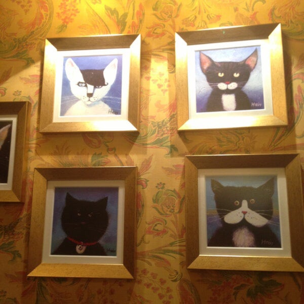 Снимок сделан в Чорний Кіт / The Black Cat пользователем Галина С. 5/23/2018