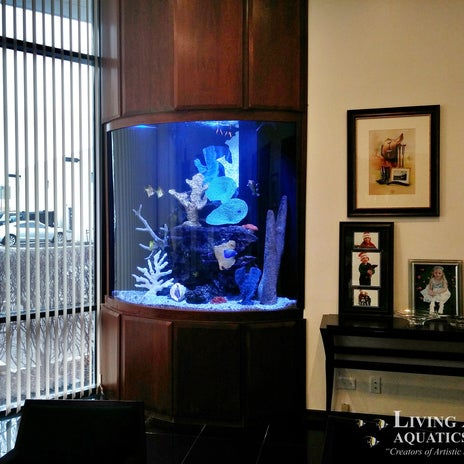 Photo Taken At Living Art Aquatics, Inc. By Yext Y. On 10/