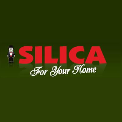 Image result for silica beaver dam logo