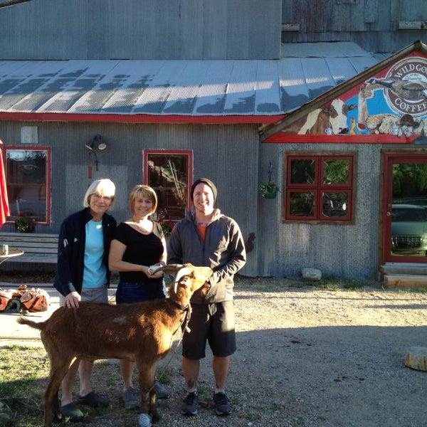 Photo taken at Wild Goose Coffee at the Granary by Wild Goose Coffee at the Granary on 6/4/2014