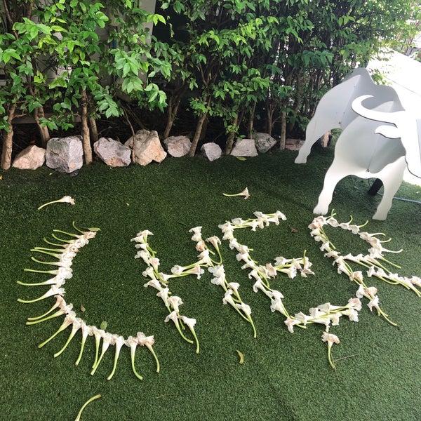 5/12/2018에 Supitsara B.님이 Cher Resort에서 찍은 사진