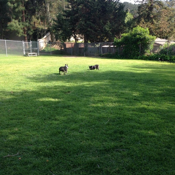 Photo taken at Laguna Canyon Dog Park by Dina H. on 4/12/2014