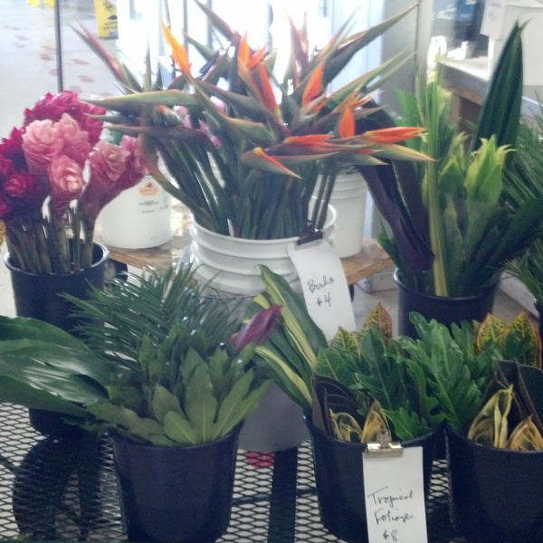 Photo taken at Market Flowers by Market Flowers on 8/8/2014