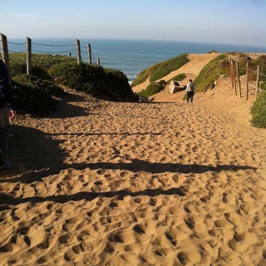 Places To Walk Your Dog In San Francisco