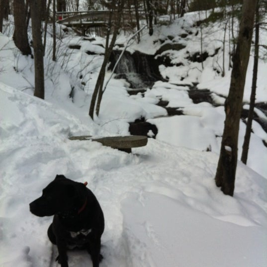 Photo taken at Jewell Falls by Stacy K. on 3/2/2012