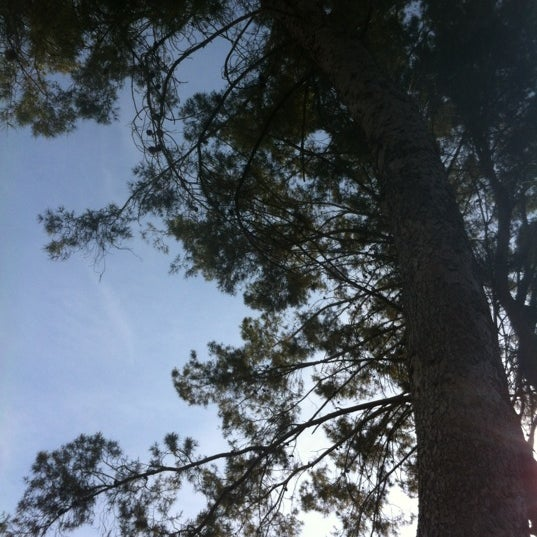 Photo taken at Ft Lowell Park by Ryan D. on 6/23/2012