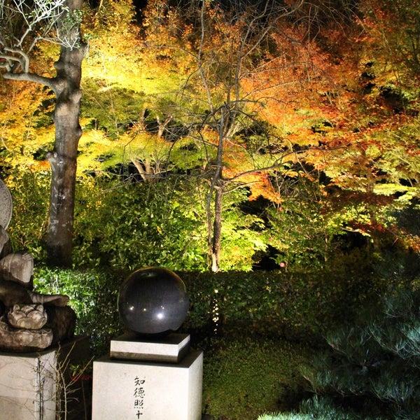 11/26/2016にたぬま ひ.が瑠璃山 雲龍院で撮った写真