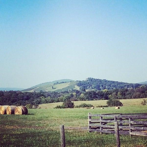 Photo taken at Three Fox Vineyards by David C. on 9/21/2014