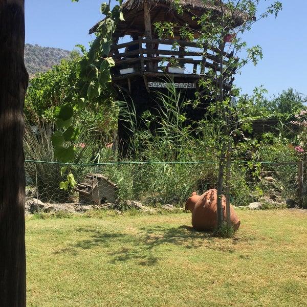 7/21/2015 tarihinde Zeynep Ç.ziyaretçi tarafından Nar Danesi'de çekilen fotoğraf