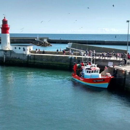 Retour des bateaux de pêche vers 16 h30 + débarquement de la pêche du jour  à voir