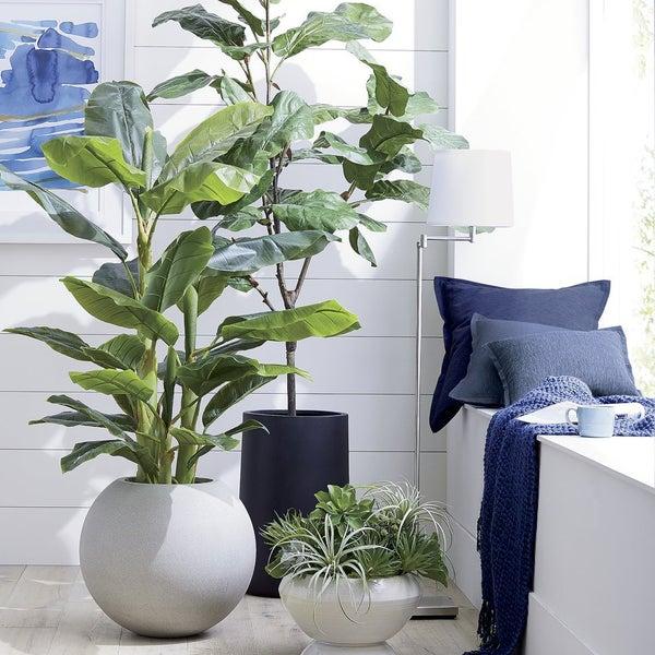 Добавьте яркие акценты в интерьер с помощью живых растений и цветных подушек Linden.