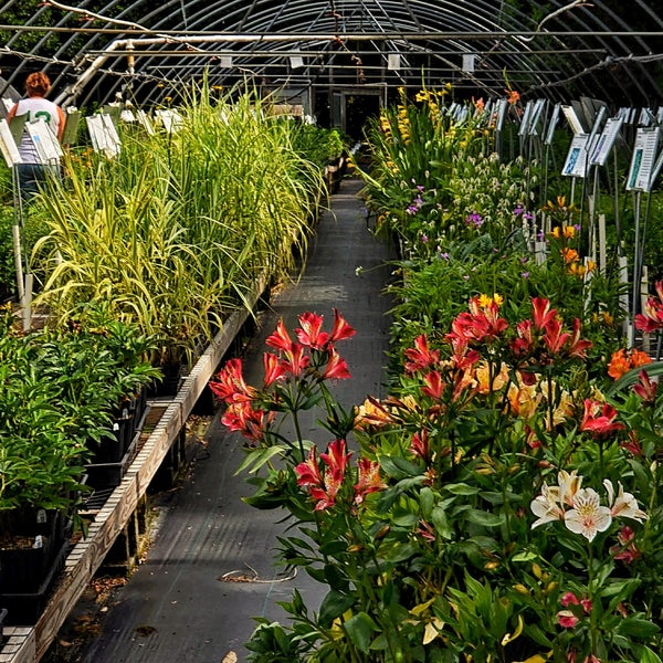 Photo Taken At Plant Delights Nursery Inc By