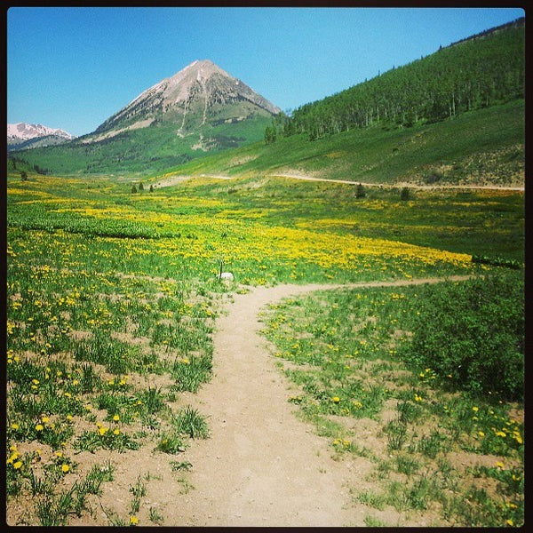 Photo taken at Crested Butte, CO by Jay D. on 6/16/2013
